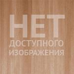 purlinskaya / Блоговая социальная сеть