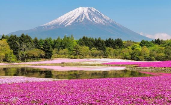 Красивые места нашей планеты. Как правильно любоваться ими?
