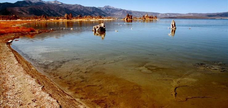 Соленое озеро Моно в США