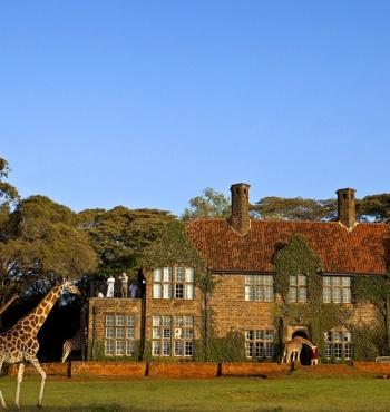 Отель Giraffe Manor: завтрак с жирафами