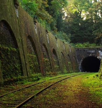 Заброшенная железная дорога The Chemin de fer de Petite Ceinture в Париже