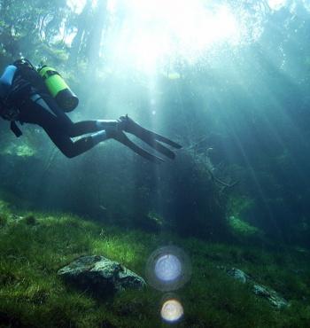 Фото дня: Затопленный парк в Австрии