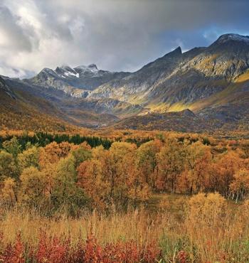Фото дня: Осень в Норвегии